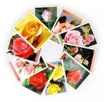Cartões postais Rosas - Coleção I